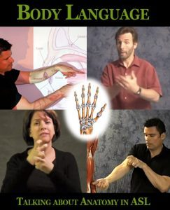 Body Language: Talking about Anatomy in ASL